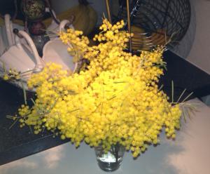 Wattle vase