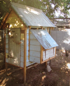 Chook house 1